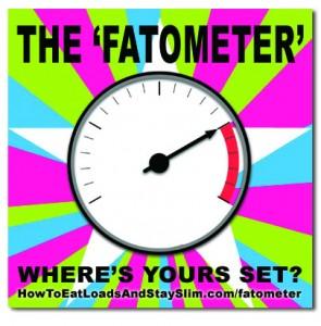 fatometer-295x300